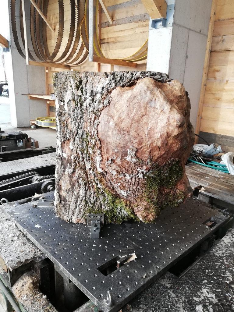 Spanvorrichtung Blockbandsäge für Baumscheiben, Holzscheiben und Baumstammscheiben